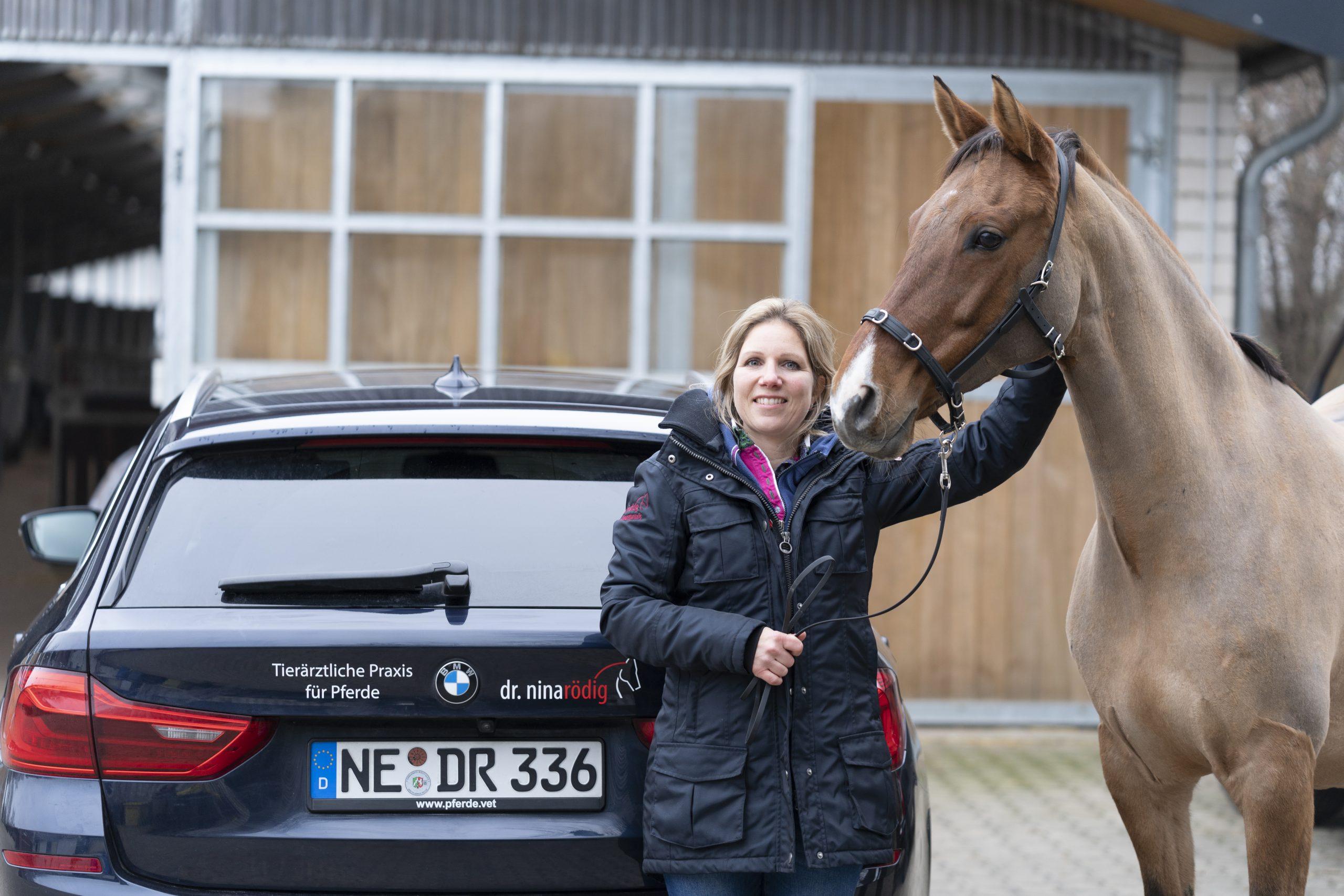 Tierärztliche Praxis für Pferde – Dr. Nina Rödig